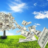 Modern Monetary Theory - The Magic Money Tree